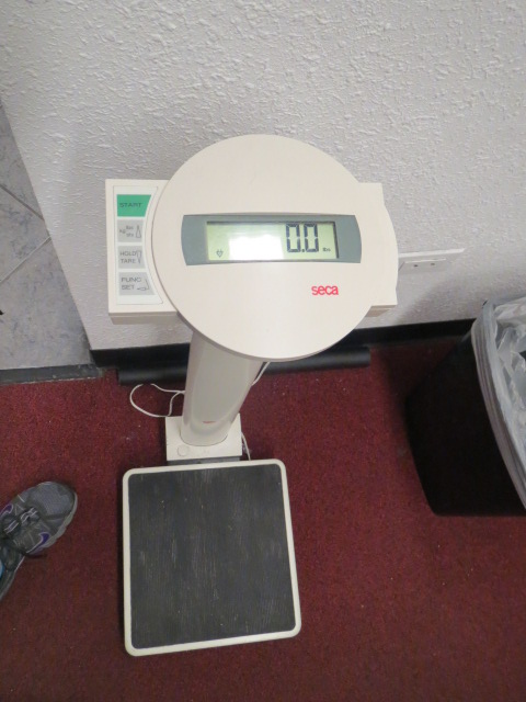 Scale at the Gym